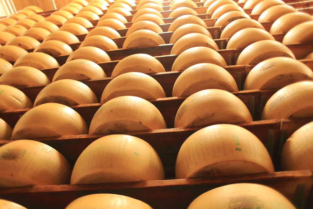Parmigiano Reggiano Cheese Factory Tour