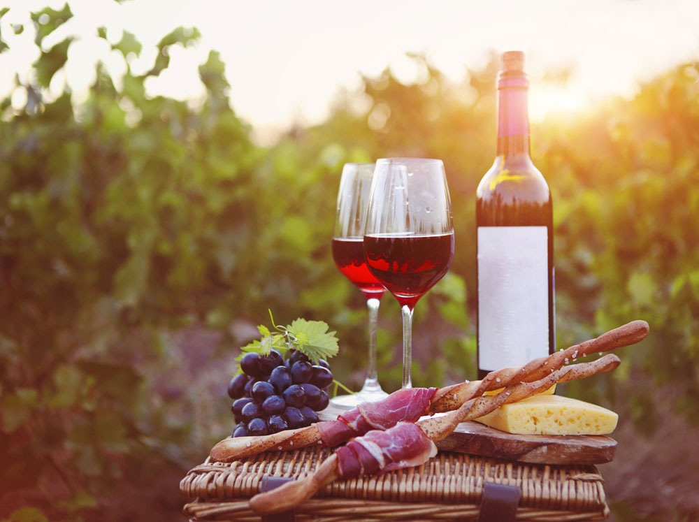 Piacenza Hills Food and Wine Experience