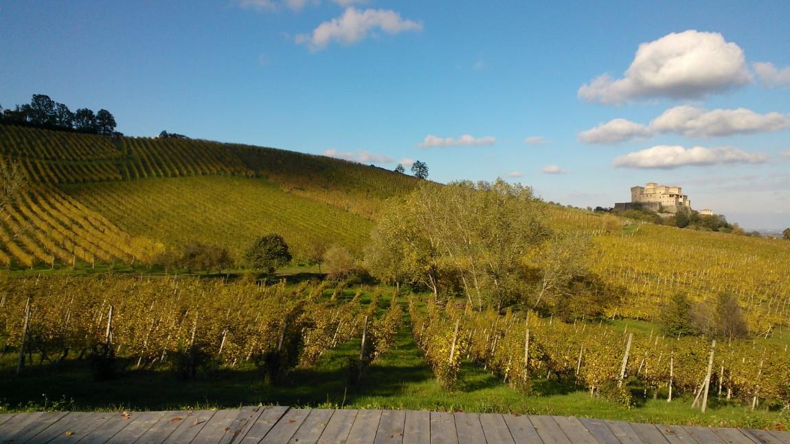 Visitare l'Emilia Romagna, Tour Enogastronomico sui Colli di Parma